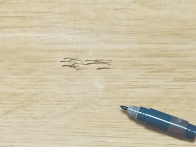 木目ペン使用